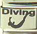 Laser Diving with Diver