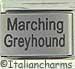 Laser Marching Greyhound