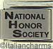 Laser National Honor Society