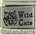 Laser Wild Cats
