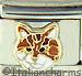Orange Brown and White Tabby Cat