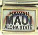 Hawaii Maui Aloha State License Plate