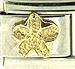 Deluxe Gold Plumeria